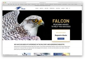 Falcon Website
